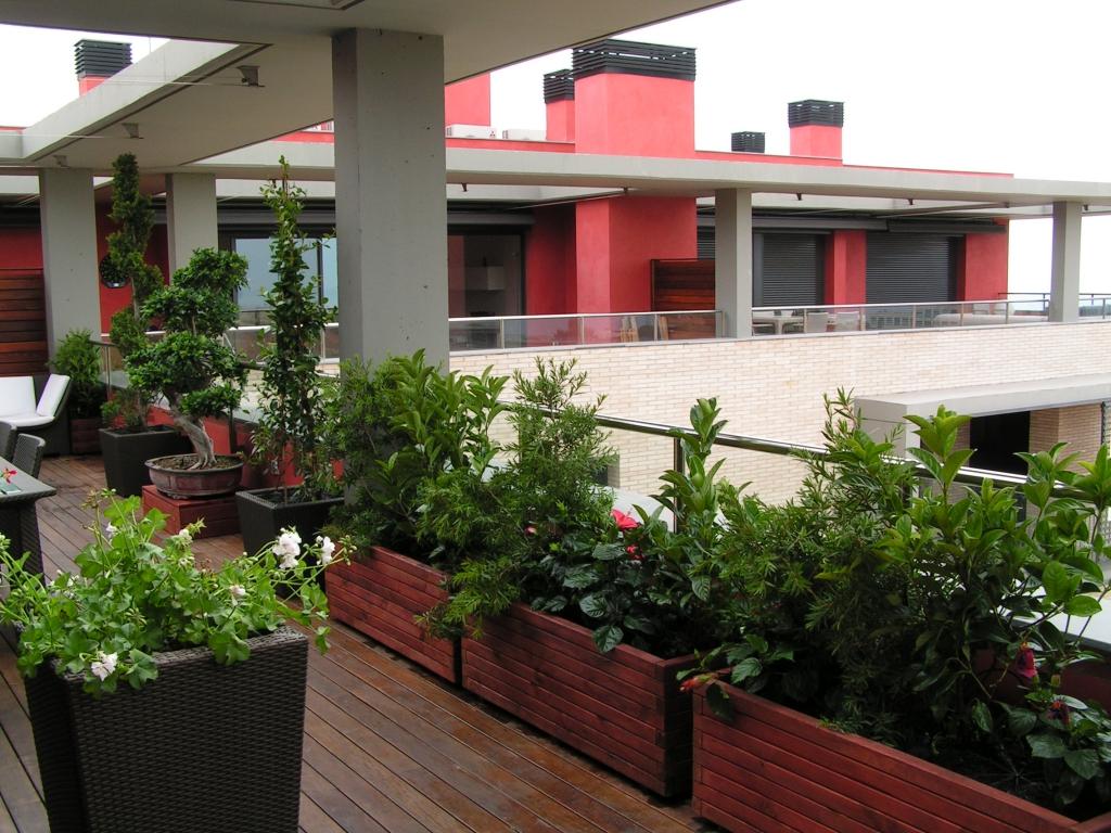 Terrazas jordi pujol jardiner for Terrazas ajardinadas