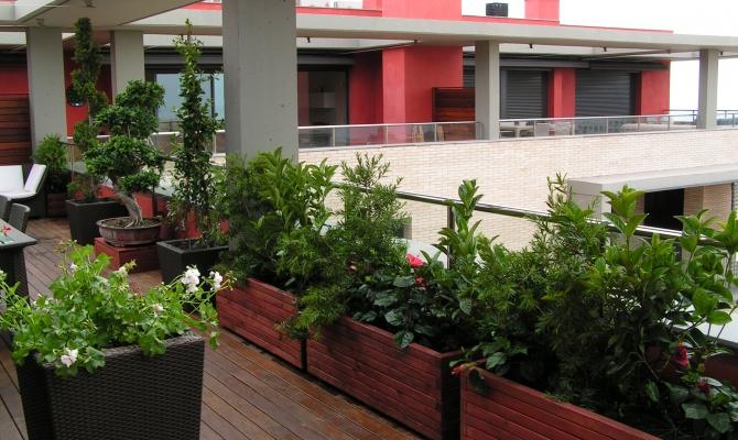 ajardinamiento terrazas