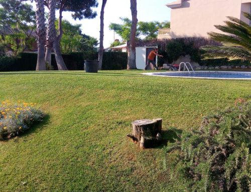Jardín de medidas considerables